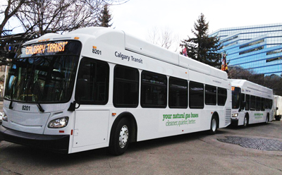 GPS Fleet Tracking For Calgary Transit Buses