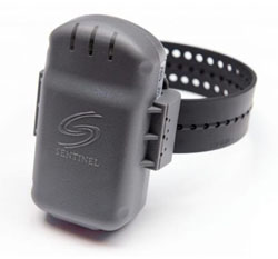 Faulty Sentinel GPS Tracking & Offender Monitoring